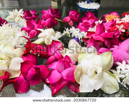 Beautiful flowers for lord Buddha Royalty-Free Stock Photo #2030867720