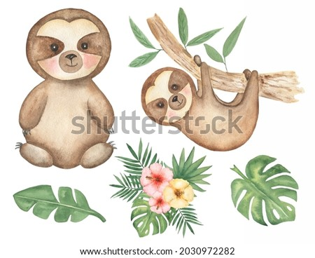 Sloth clipart. Watercolor Baby Sloth clip art, Tropical animal, Leaves Frame, Jungle Flower bouquet, Baby Shower, Kids Birthday Party