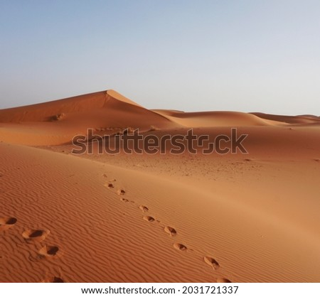 The dunes of Erg Chebbi, Morocco Royalty-Free Stock Photo #2031721337