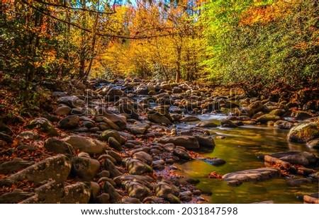 Forest stream in autumn landscape. Autumn forest creek. Autumnal background. Autumn forest stream Royalty-Free Stock Photo #2031847598