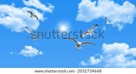 Clear sunny sky, white clouds and flying seagull birds Royalty-Free Stock Photo #2032734668