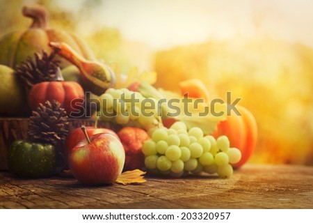 Autumn nature concept. Fall fruit and vegetables on wood. Thanksgiving dinner Royalty-Free Stock Photo #203320957