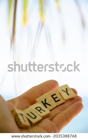 Lettering Turkey on hand against background of blurred turquoise sea, blue sky and palm leaves. Inscription Turkey. Sea vacation concept. Representation of country resorts. Royalty-Free Stock Photo #2035388768