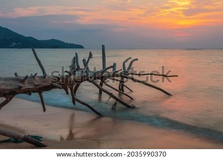 Оld wood snag on tropical beach at beautiful sunset. Nature background. Nai Yang beach. Phuket. Thailand Royalty-Free Stock Photo #2035990370
