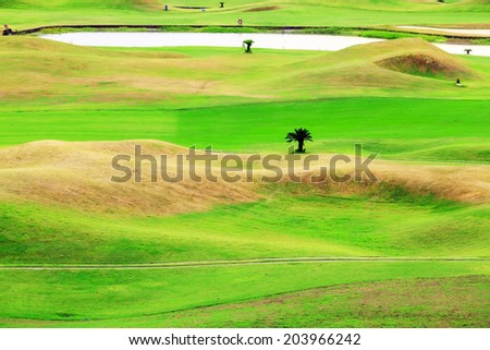 Beautiful golf place with nice background for adv or others purpose use #203966242