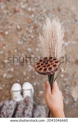 autumn bouquet in your hand. spikelets, dried flowers, dry lotus flower. atmospheric autumn picture. selective focus