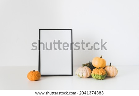Mock up empty frame and colorful pumpkins on white background. Fall and autumn minimalism concept. Copy space, place for text or your design.