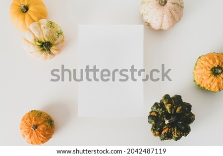 Mock up empty frame paper card and colorful pumpkins on white background, flat lay. Fall and autumn minimalism concept. Copy space, place for text or your design.