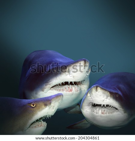 Three sharks have a fun. Picture with space for your text.