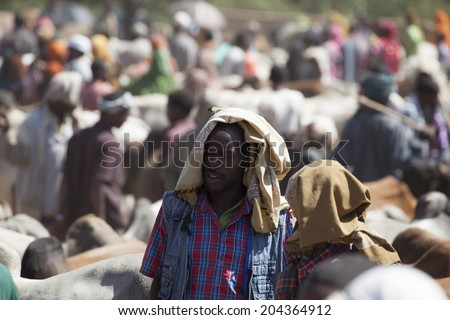 BABILE, ETHIOPIA - DECEMBER 23, 2013: Brahman bull, Zebu and other cattle for sale at one of the largest livestock market in the horn of Africa countries.  #204364912