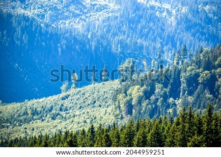 Lonely trees on the mountainside and wooded green slopes, view from afar Royalty-Free Stock Photo #2044959251