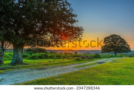 Dawn over a rural road. Early morning rural sunrise. Nature at dawn. Sunrise dawn Royalty-Free Stock Photo #2047288346