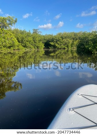 Mangroves and blue sky at JN Ding Darling National Wildlife Refuge Royalty-Free Stock Photo #2047734446