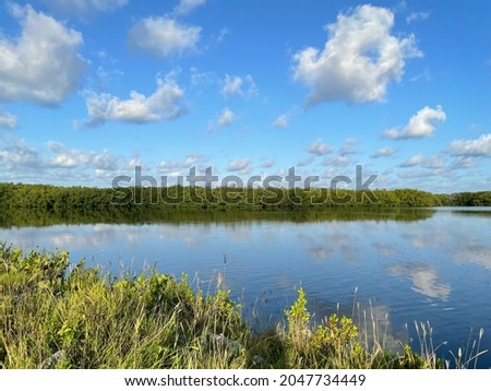 Mangroves and blue sky at JN Ding Darling National Wildlife Refuge Royalty-Free Stock Photo #2047734449