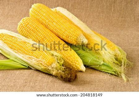 Corn on the sackcloth #204818149