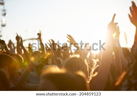 Audience At Outdoor Music Festival Royalty-Free Stock Photo #204859123