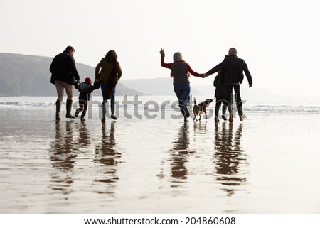 Multi Generation Family Walking On Winter Beach With Dog #204860608