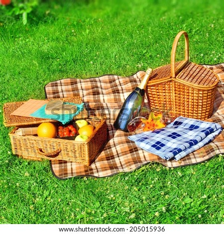 Summer Vacation Picnic Scene with copy space. #205015936