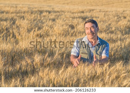farmer standing in a wheat field, looking at the crop #206126233