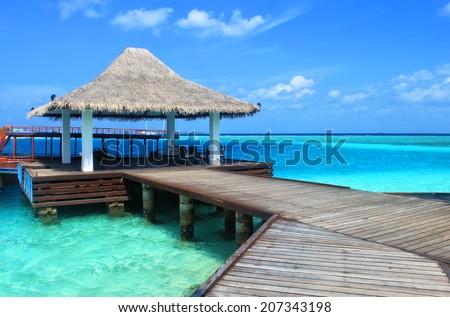 Beautiful tropical paradise island, the Maldives #207343198
