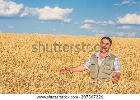 farmer standing in a wheat field, looking at the crop #207567226