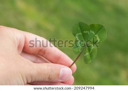Four-leaf clover in hand horizontal on a green #209247994