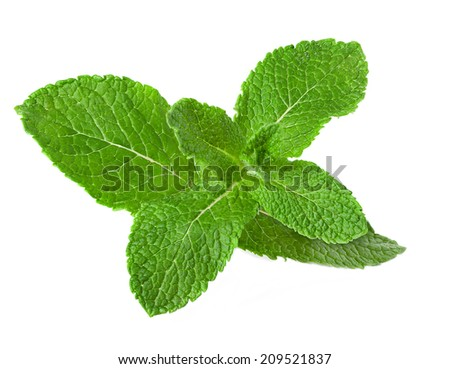 Fresh raw mint leaves isolated on white background #209521837