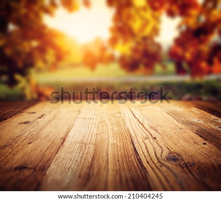 autumn background  Royalty-Free Stock Photo #210404245
