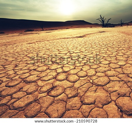 Dead valley in Namibia #210590728