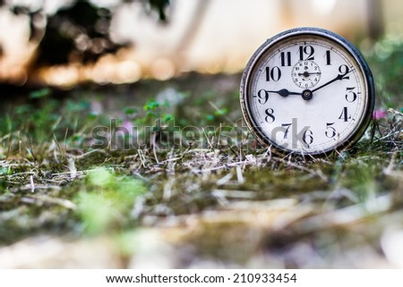 Picture of a antique clock in nature