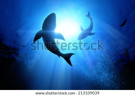Under the waves circle two great white sharks. Illustration