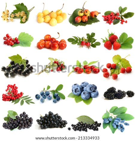 Collection of ripe berries on white background #213334933
