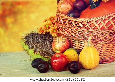 Autumn nature concept. Fruit and vegetables on wood. Thanksgiving dinner.
