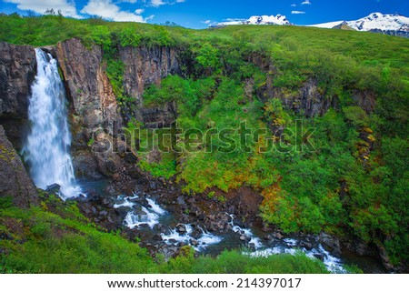 Amazing waterfall at the southside of Iceland near Svartifoss waterfall and Hvannadalshnukur glacier #214397017