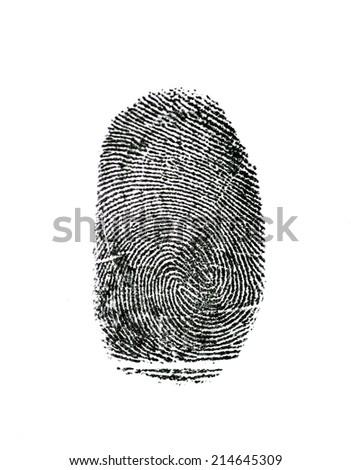 fingerprint isolated on white  #214645309