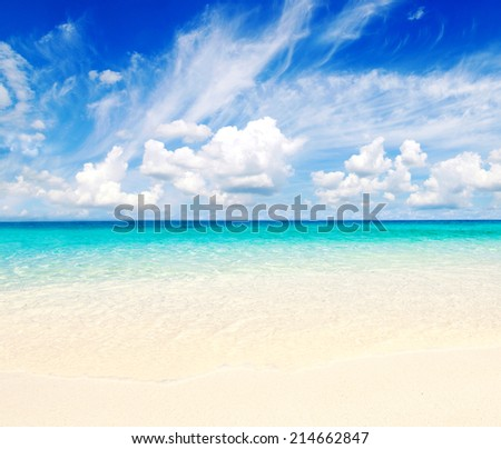 beach and tropical sea #214662847