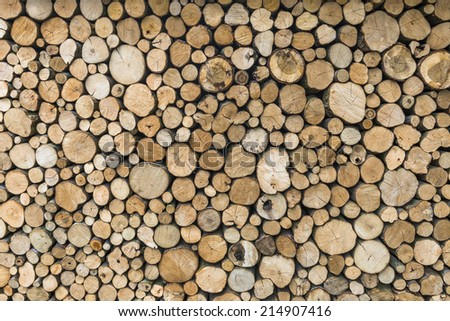 A pile of cut tree logs - background  #214907416