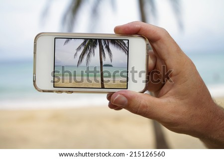 Close up of hand taking a photograph of palm tree with mobile phone screen
