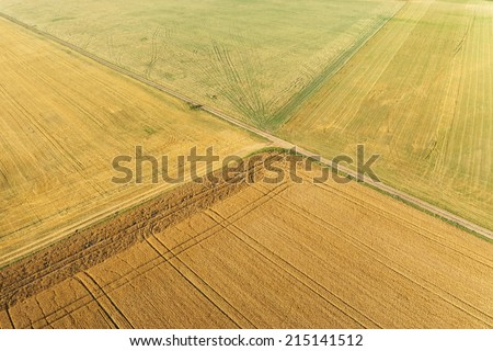 Areal view of crop fields in sunny summer day #215141512