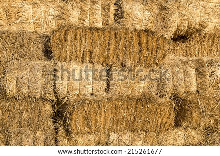 Yellow straw bale wall texture background #215261677