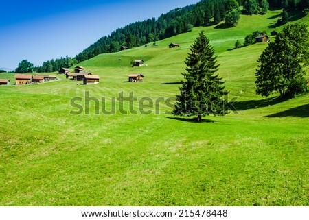Wooden houses in Malbun in Lichtenstein, Europe #215478448