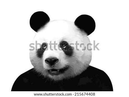 Vector image of panda #215674408