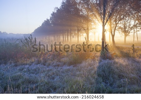 Beautiful sunrise with frost Royalty-Free Stock Photo #216024658