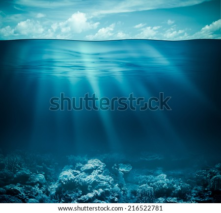 Underwater coral reef seabed and water surface with sky #216522781