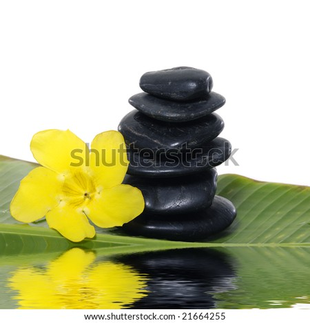 Reflection for orchid and stones on banana leaf #21664255
