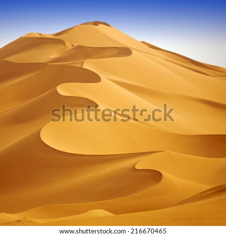 Huge dunes of the desert. Fine place for photographers and travelers. Beautiful structures of sandy barkhans. #216670465