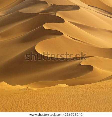 Huge dunes of the desert. Fine place for photographers and travelers. Beautiful structures of sandy barkhans. #216728242