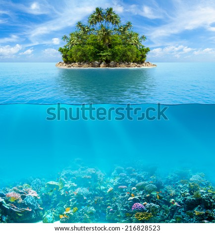 Underwater coral reef seabed and water surface with tropical island #216828523