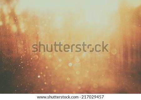 background image of light burst among trees. image is retro filtered