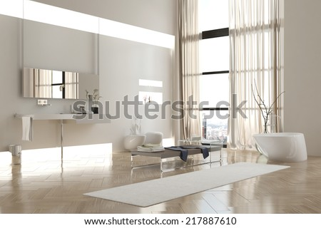 Interior of Modern White Bathroom in Apartment with Sparse Furnishings #217887610